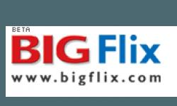 BIG Flix