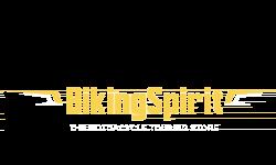 Bikingspirit